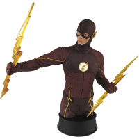 Flash TV Show - Flash Bust