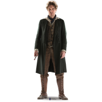 Doctor Who - The 8th Doctor Paul McGann Cut Out Standee