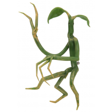 Fantastic Beasts and Where to Find Them - Pickett Bowtruckle Pin & Necklace
