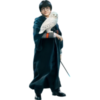 Harry Potter - Harry Potter Halloween Version 1/6th Scale Action Figure