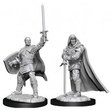Dungeons & Dragons - Nolzur's Marvelous Unpainted Minis: Human Paladin Male