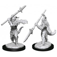 Dungeons & Dragons - Nolzur's Marvelous Unpainted Minis: Bearded Devils