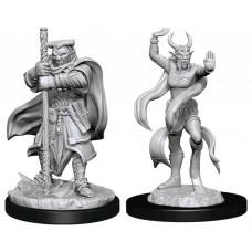 Dungeons & Dragons - Nolzur's Marvelous Unpainted Minis: Hobgoblin Devastator & Iron Shadow
